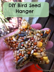 Beautiful bird seed feeder or hanger kids can make.