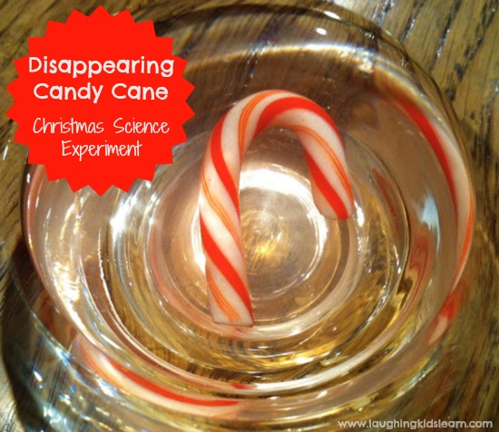 Disappearing candy cane science experiment that your children are sure to love doing this Christmas.