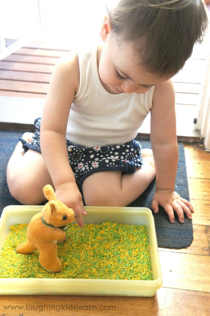 Adding characters to australia day sensory rice