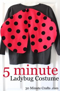 5-Minute-Ladybug-Costume-on-30-Minute-Crafts