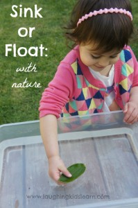 Does it sink or float activity using natural objects from nature