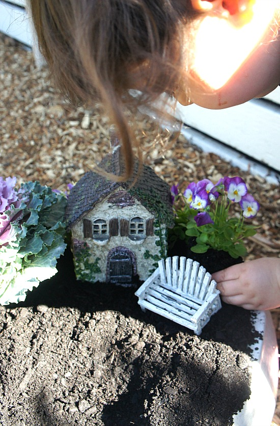 Planting plants in fairy garden