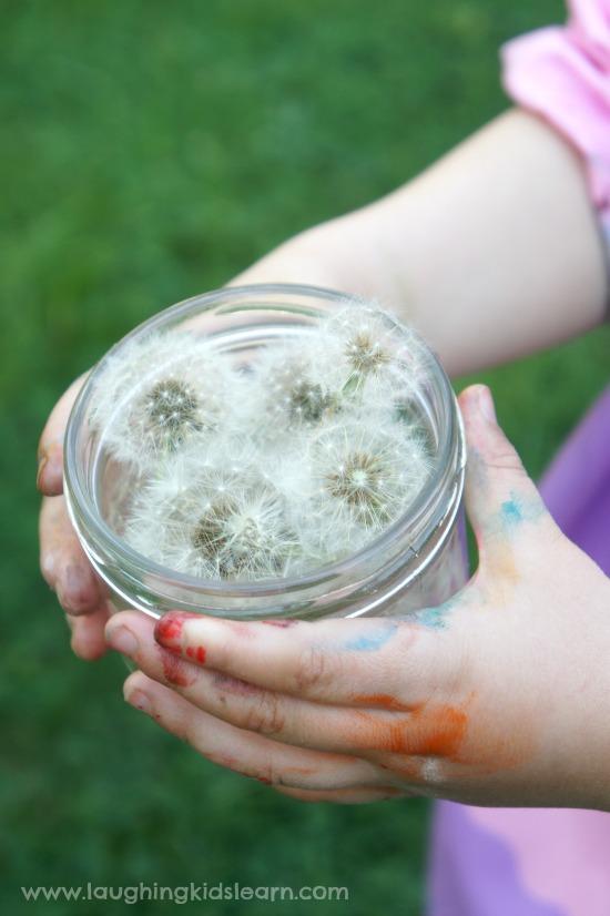 jar of fairy dandelion wishes