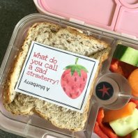 lunchbox jokes for kids to take to school
