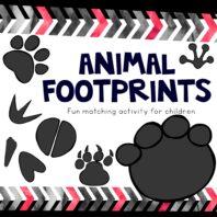 Matching animal footprints activity